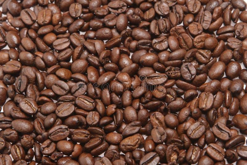 Kornkaffee stockbilder