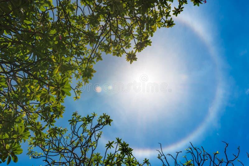 Korona słoneczna pierścionek słońce fotografia royalty free