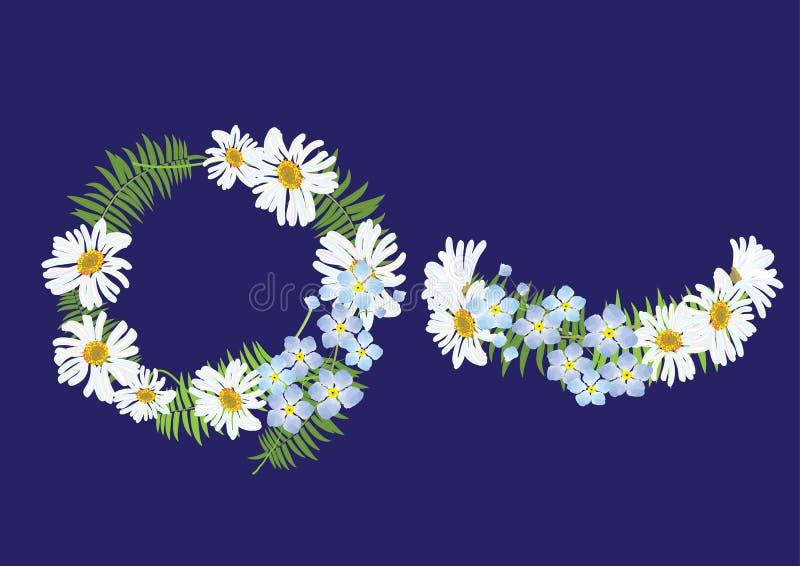 Korony stokrotki kwiat z paprocią, kapitałka odgórnym widokiem i bocznym widokiem, royalty ilustracja