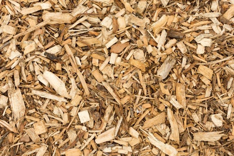 Korowaci Drewniani układy scaleni Dla Kształtować teren Abstrakcjonistycznego tło - Odgórny widok - zdjęcie royalty free