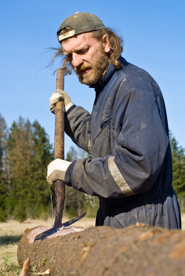 korowata usunąć pracownika drewna obraz royalty free