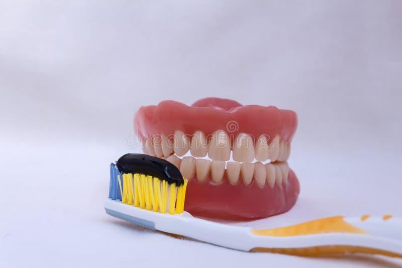 korrekte Zahnreinigung stockfotografie