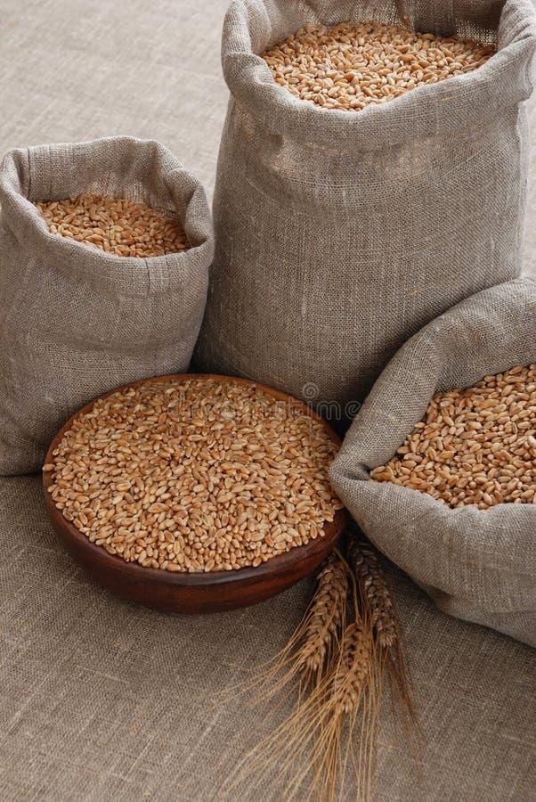 Korrel van de tarwe in zakken en een kom royalty-vrije stock foto