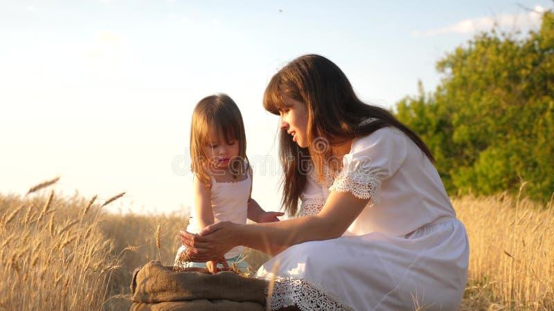 Korrel van tarwe in handen van kind de moeder en weinig kind spelen met korrel in zak op een tarwegebied Baby girl royalty-vrije stock afbeelding
