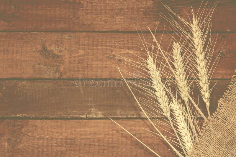 Korrels van Tarwe op doorstane houten achtergrond met exemplaar-ruimte F royalty-vrije stock foto