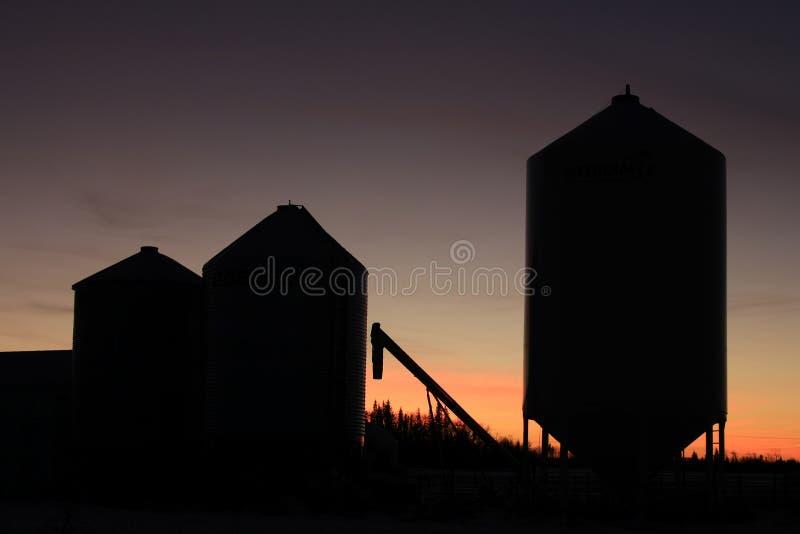 Korrelsilo's op landbouwgrond door een zonsondergang wordt gesilhouetteerd die stock fotografie