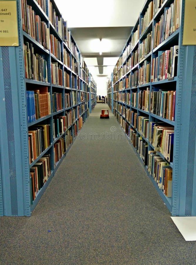 Korridor von Büchern stockbild
