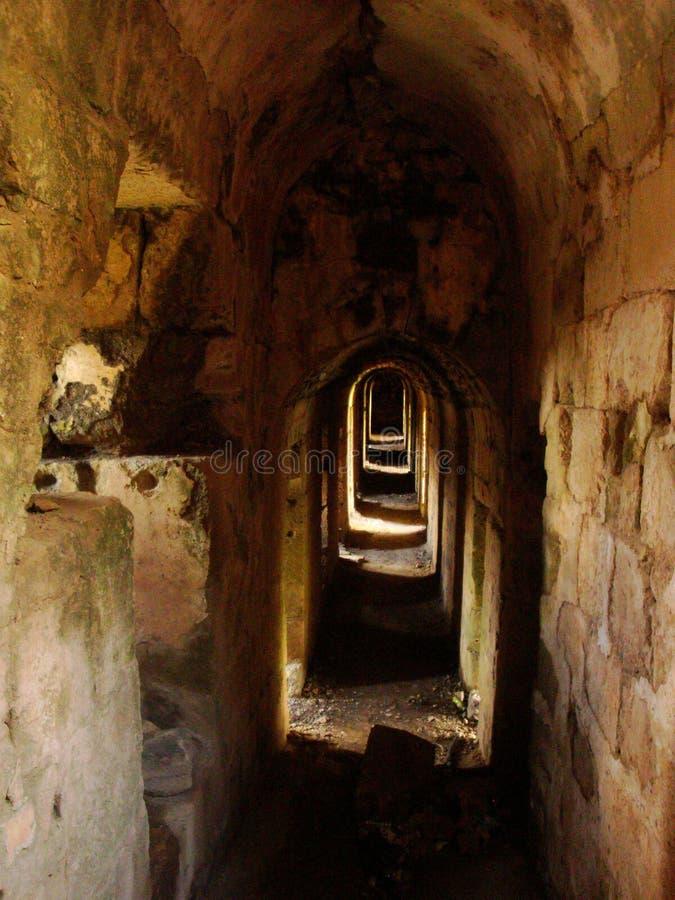 Korridorer av Krak des-Chevaliers, Syrien royaltyfria bilder