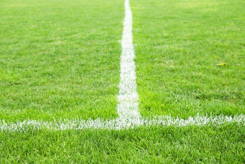 Kors av målade vita linjer på naturligt fotbollgräs Konstgjord grön torvatextur royaltyfria bilder