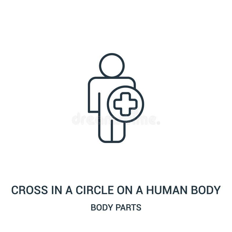 kors i en cirkel på en vektor för människokroppkontursymbol från kroppsdelsamling Tunn linje kors i en cirkel på en människokropp stock illustrationer