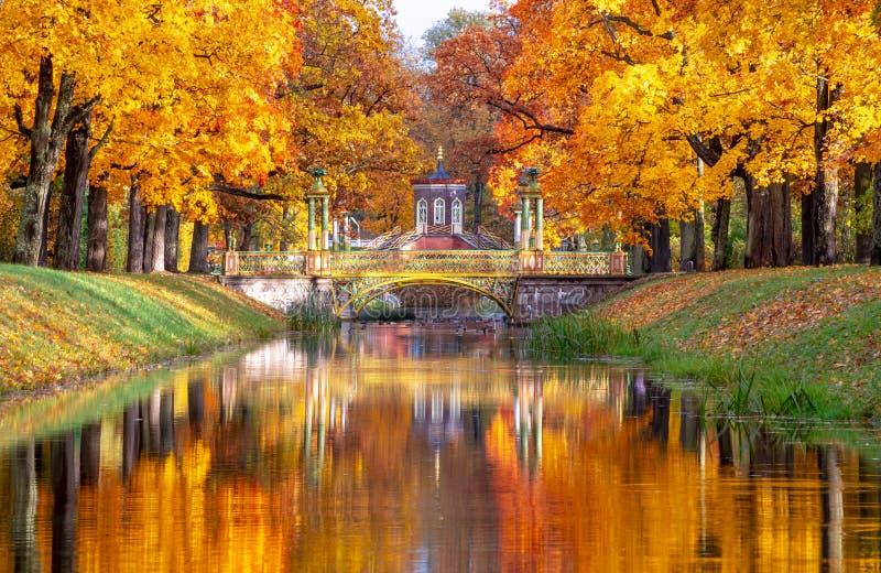 Korsbro och kinesiska broar i Alexander-parken på hösten, Pushkin Tsarskoe Selo, Sankt Petersburg, Ryssland royaltyfri fotografi