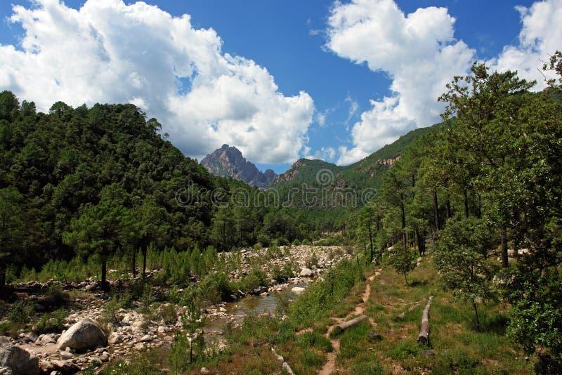 Korsika-Fluss stockfotos