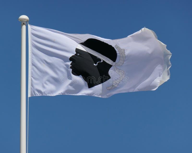 Korsikansk flagga royaltyfri fotografi