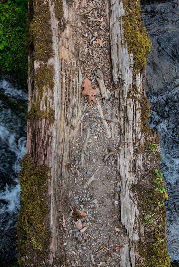 Korsning journalbro över att rusa vatten royaltyfri bild