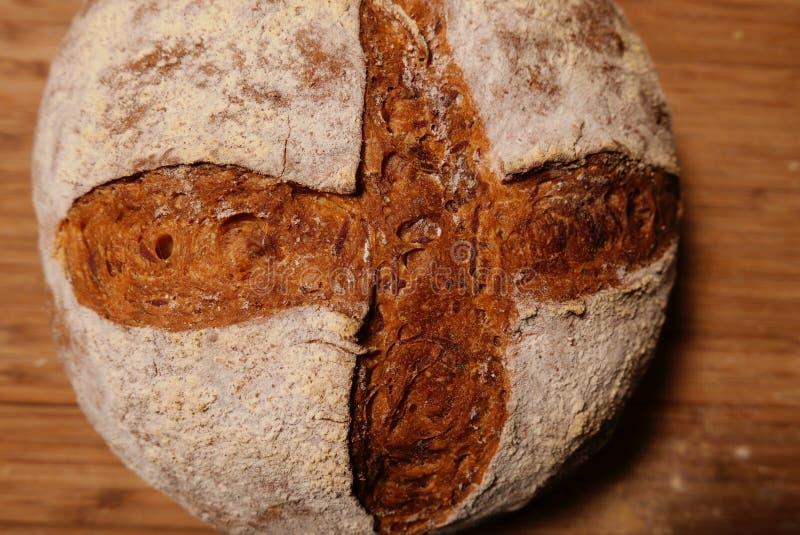 Korssnittet på nytt bakad runda släntrar av bröd arkivbilder