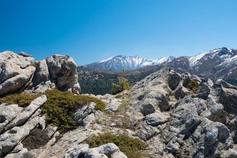 Korsykańskie wysokie góry zdjęcie stock