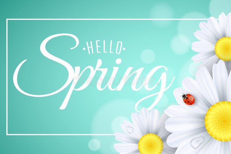 Kort för Hello vårgåva Säsongsbetonat baner Nyckelpigaäckelar på blommorna Realistiska tusenskönor Kalligrafi och bokstäver i ram stock illustrationer
