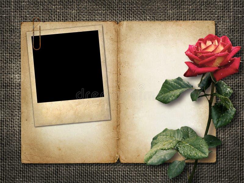 Kort för inbjudan eller lyckönskan med den röda rosen och gammal phot royaltyfri fotografi