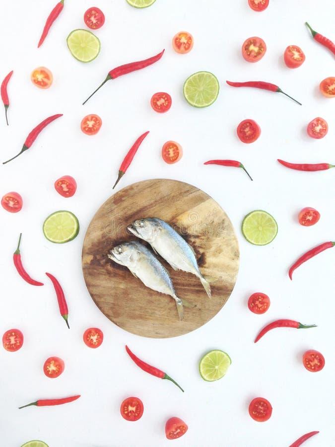 Kort makrill bland limefrukt royaltyfri fotografi