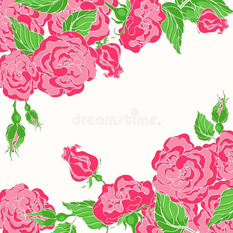 Kort med rosa ro vektor illustrationer