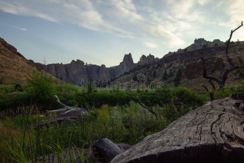 Kort na zonsopgang in Smith Rock National Park in Oregon de V.S. Weergeven van klippen en gebied van gras en gevallen logboeken stock afbeelding