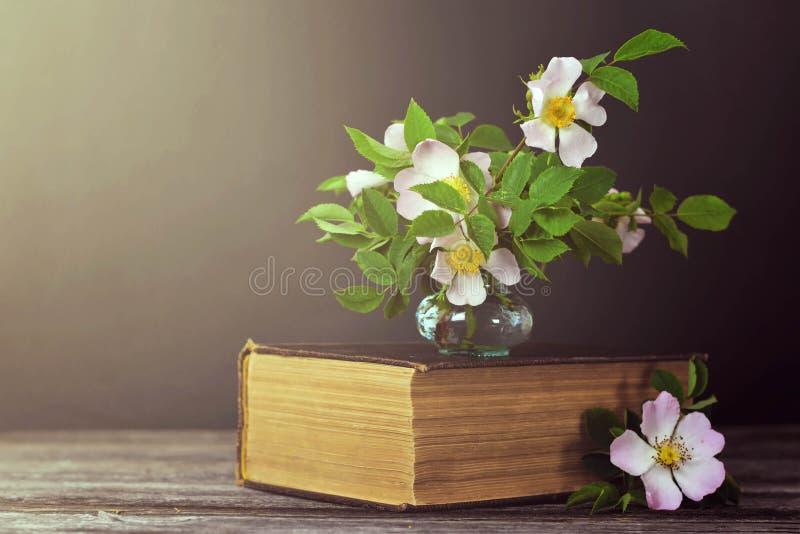 kortdagmamma s Stilleben med härliga rosor och den gamla boken på mörk bakgrund arkivfoton