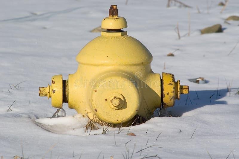 Korte Fireplug In Sneeuw Royalty-vrije Stock Afbeelding