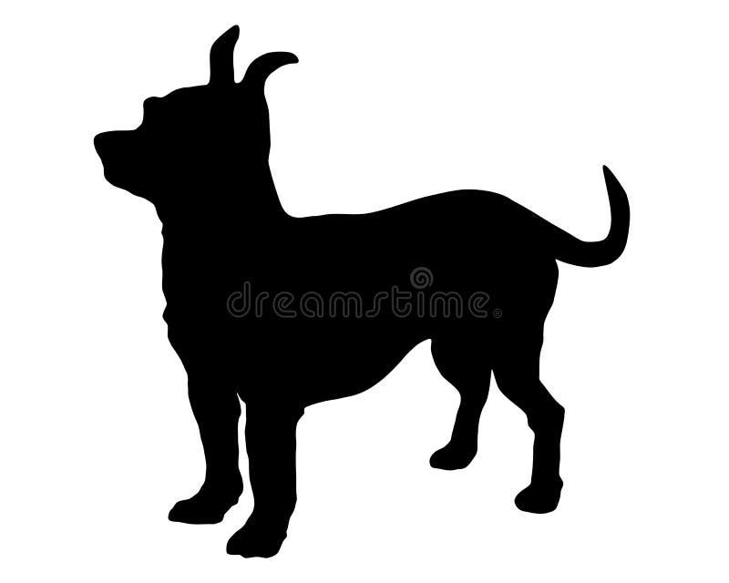 Kortharige Chihuahua royalty-vrije illustratie
