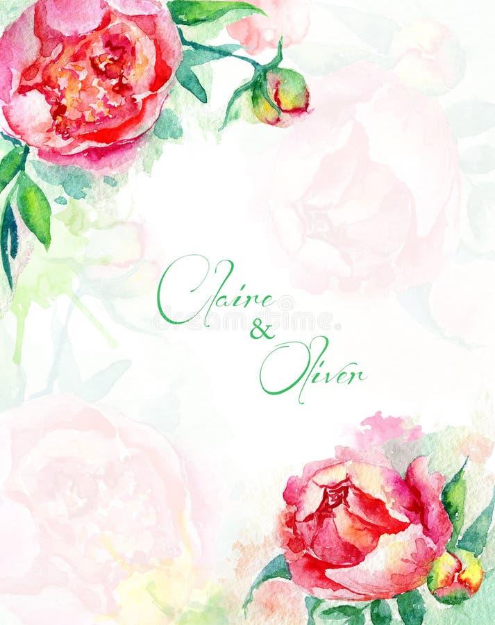 1 kortinbjudan Rosa och röda vattenfärgpioner blom- tappning stock illustrationer