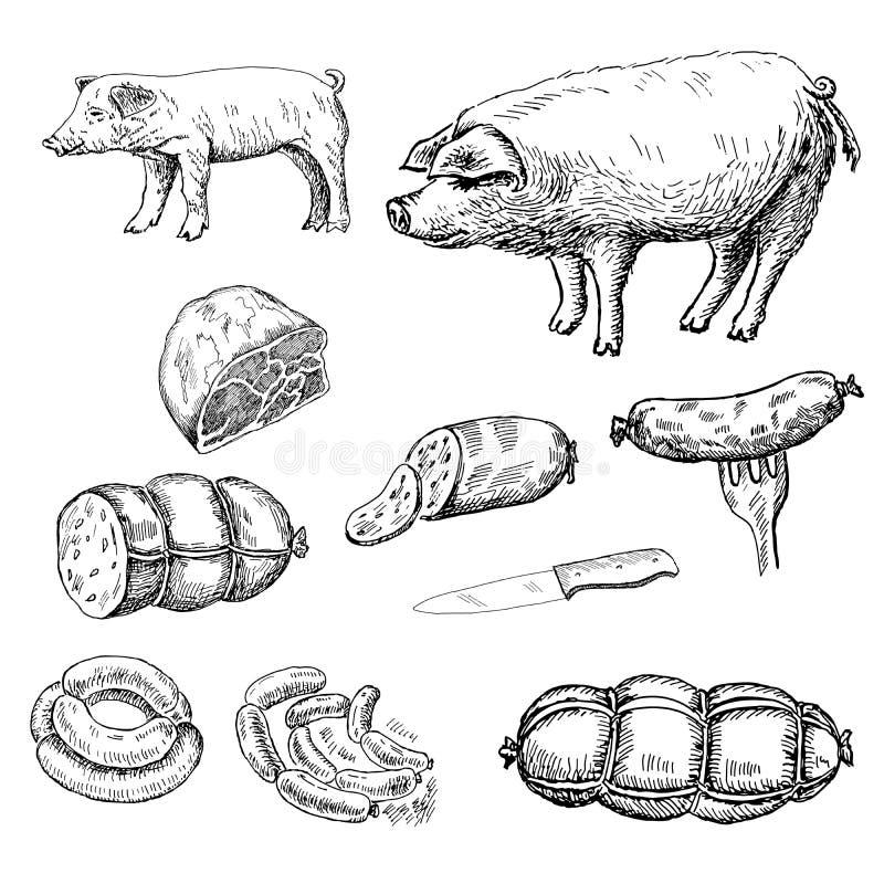 Korv royaltyfri illustrationer