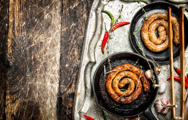 Korvar i pannor på ett stålmagasin med peppar för varm chili royaltyfria foton