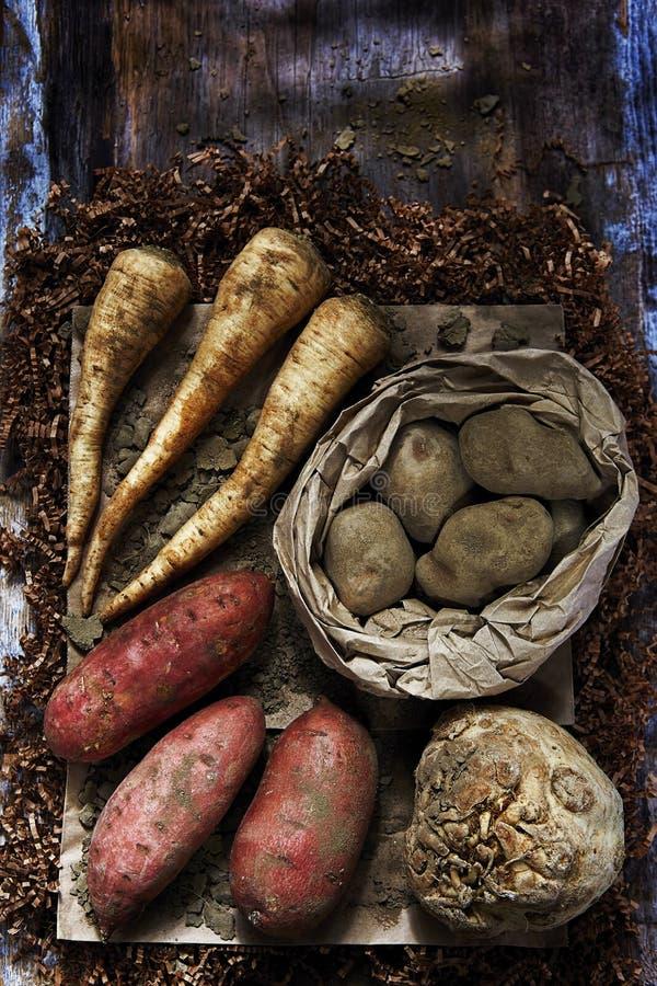 Korzeniowego warzywa celeriac pasternaka grule zdjęcia royalty free
