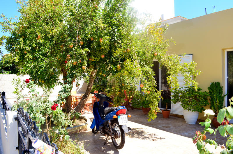 Koseiland, Griekenland Typische Griekse werf van een huis met oranje die boom en motorfiets wordt geparkeerd onderaan royalty-vrije stock foto