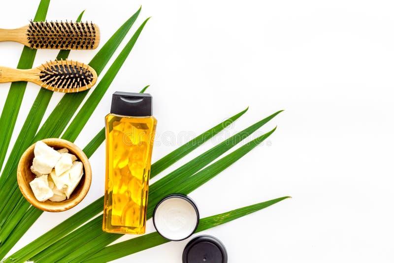 Kosmetik für Haarpflege mit Buxacee, Argan- oder Kokosnussöl und Shampoo in der Flasche auf weißem copyspace Draufsicht des Hinte lizenzfreie stockbilder