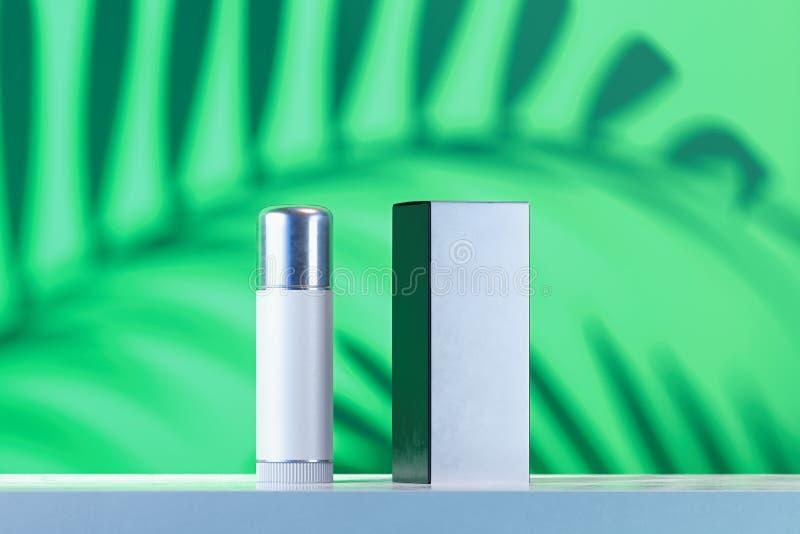 Kosmetische container lippenpommade leeg malplaatje van het pakket van het Schoonheidsproduct en witte lege kartondoos het 3d ter royalty-vrije illustratie