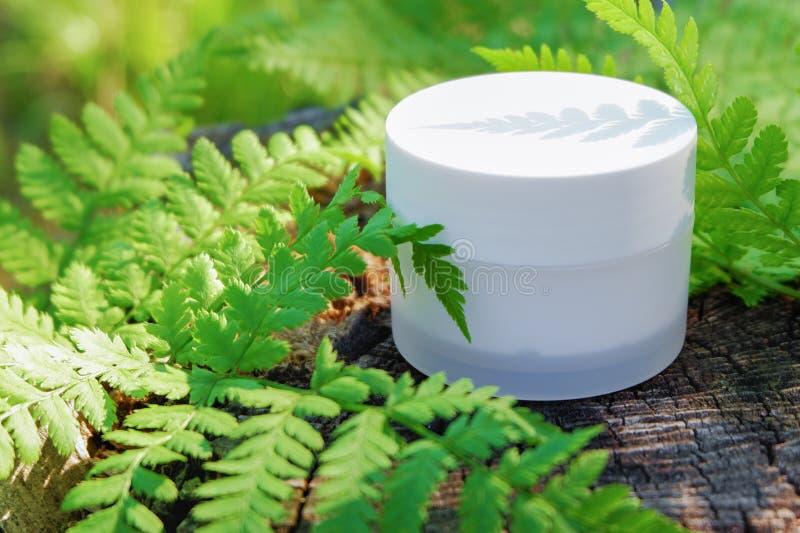 Kosmetische room voor huidzorg Natuurlijke schoonheidsmiddelen in aard met groene varenbladeren stock afbeeldingen