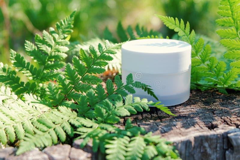 Kosmetische room voor huidzorg Natuurlijke schoonheidsmiddelen in aard in openlucht met groene varenbladeren stock fotografie