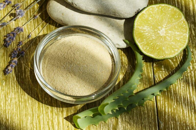 Kosmetisk gyttjamaskering 1 arkivbilder