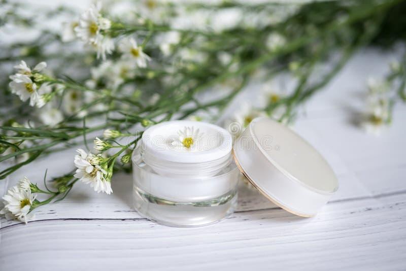 Kosmetiskt naturskincarebegrepp Organisk naturlig skönhetsprodukt alternativ medicin gjorde från växt- falsk vit kräm- serum upp royaltyfri foto