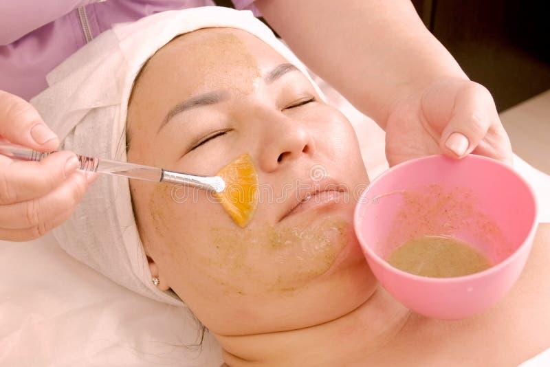 Kosmetologen applicerar en borstegräsplanmaskering av fruktfrökiwin eller alger en kvinna av plus formatet tar kosmetisk framsida royaltyfria bilder