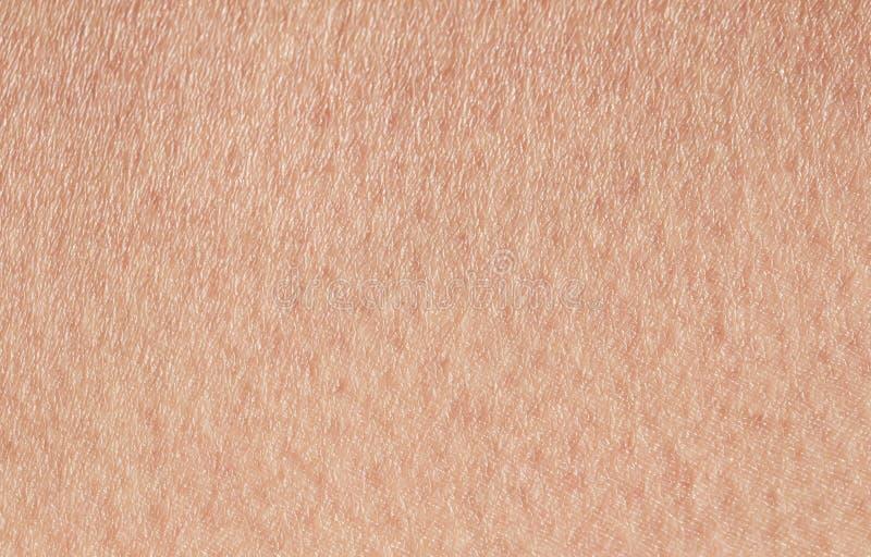 Kosmetologia textured tło od różowej zdrowej ludzkiej skóry dławiec podpalający w górę, zakrywał z, pores i grzywnów zmarszczenia obraz royalty free