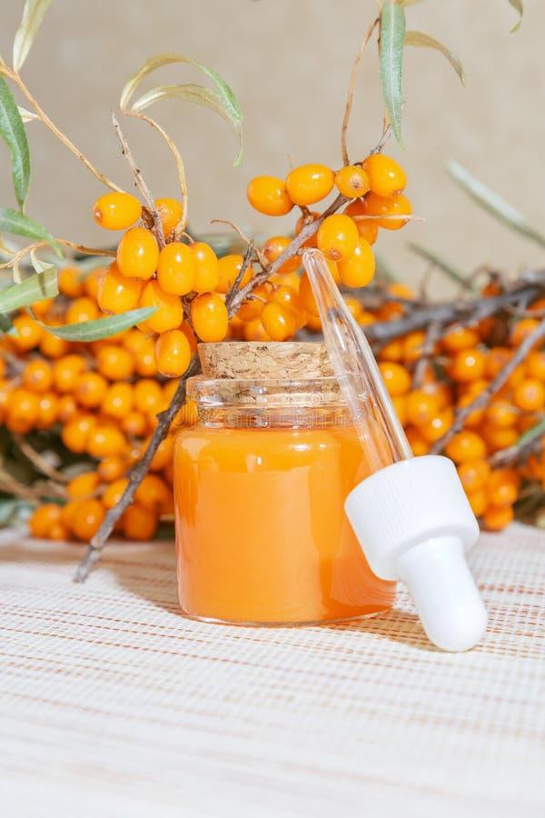Kosmetologia, tradycyjna medycyna alternatywna, medycyna ziołowa, naturalne kosmetyki ziołowe, olej z brzuszków morskich w szklan obrazy stock