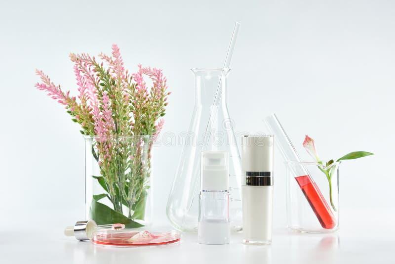 Kosmetyczni butelka zbiorniki z różowymi ziołowymi liśćmi i naukowym glassware, Pusty etykietka pakunek dla oznakować egzamin pró obrazy royalty free
