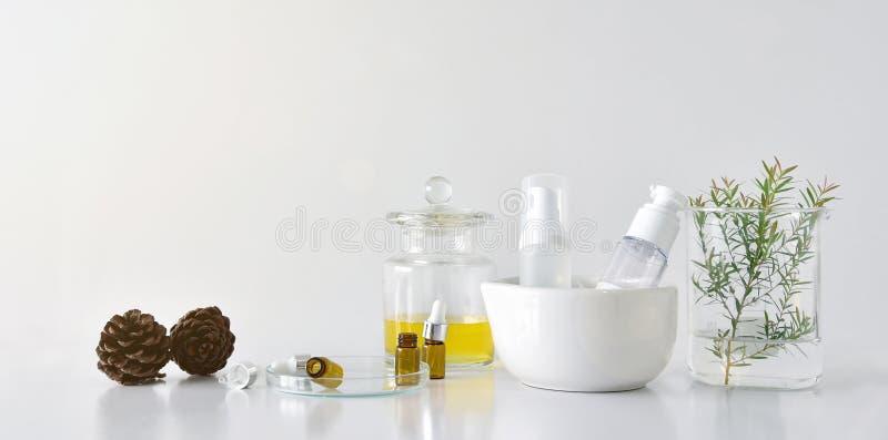 Kosmetyczni butelka zbiorniki z zielonymi ziołowymi liśćmi i naukowym glassware, Pusty etykietka pakunek dla oznakować egzamin pr fotografia stock