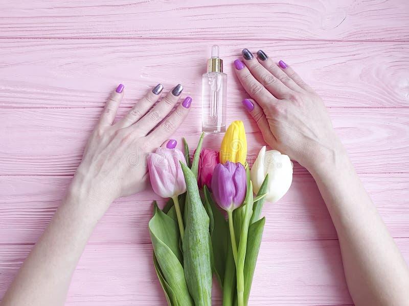Kosmetyczny ekstrakt, kobieta wręcza wiosnę, kwiat dba bukiet tulipany na różowym drewnianym tle zdjęcie stock