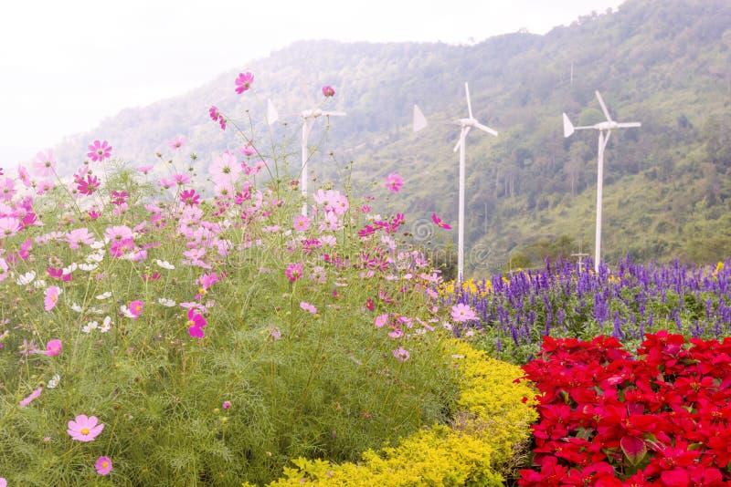 Kosmos kwitnie z silnikami wiatrowymi wytwarza elektryczność zdjęcia stock