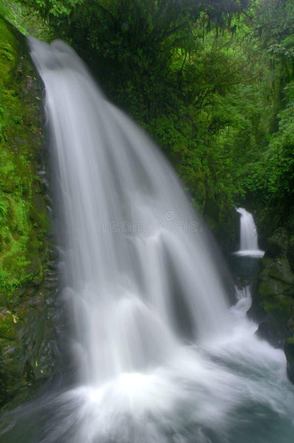 kostaryka wodospadu obraz stock