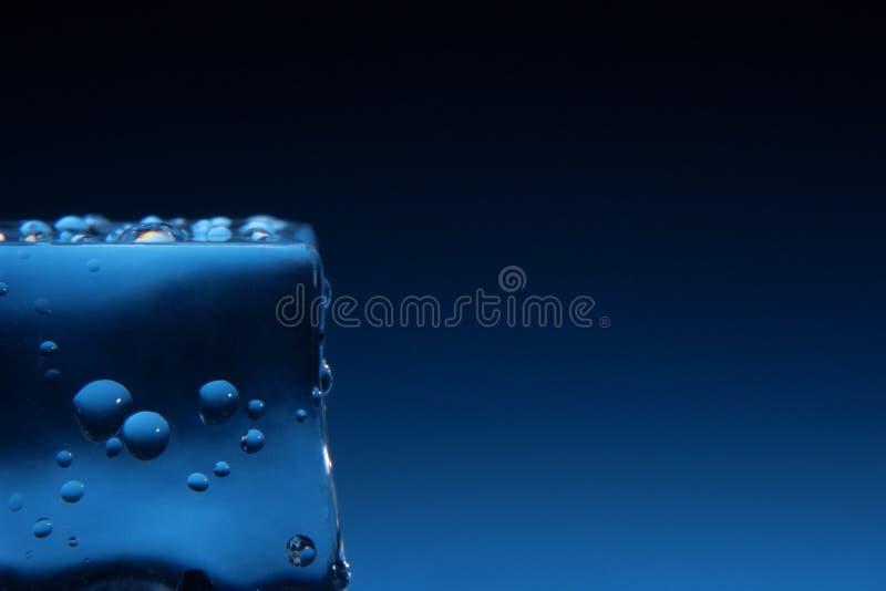 Kostka lodu z wodą opuszczają tło fotografia stock