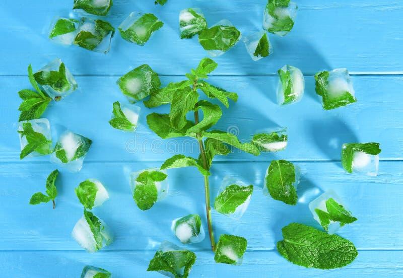 Kostki lodu z zamarzniętymi nowymi liśćmi inside, zdjęcia stock