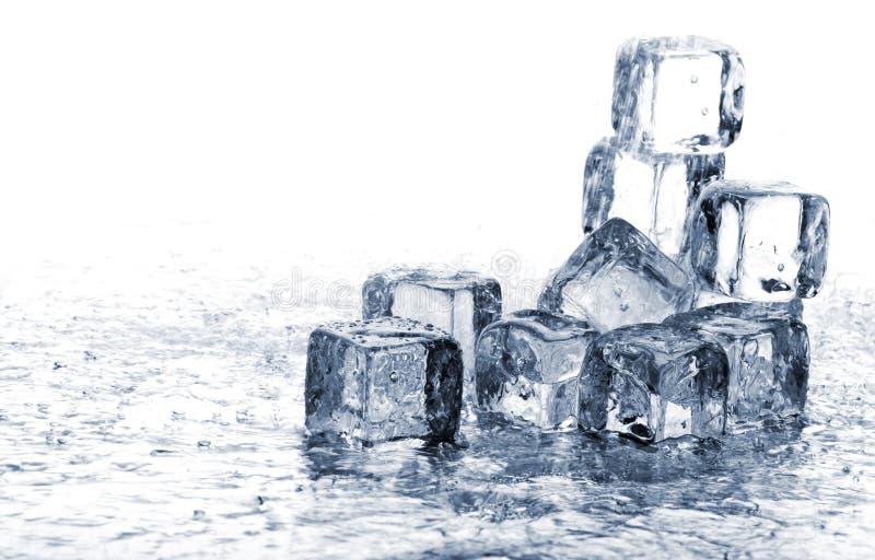 kostki podobszaru ices topnienia obrazy stock